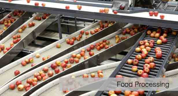 conveyor systems for fragile fruit